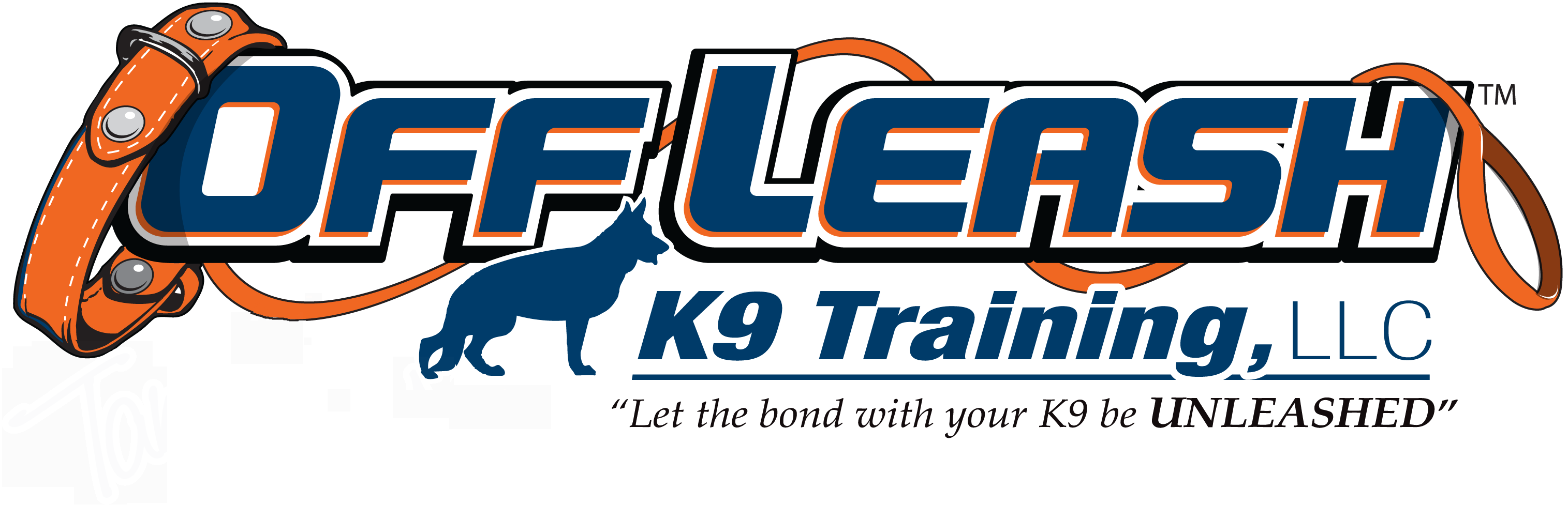 Stamford CT Offleash K9 Dog Training